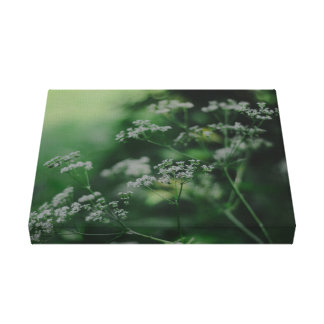 SUMMER MEADOW ONE CANVAS PRINT