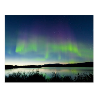 Summer night Northern lights over Lake Laberge Postcard