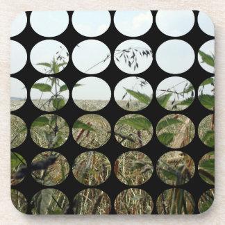 Summer Polka Dots Fields Skies Coaster
