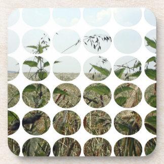 Summer Polka Dots Fields Skies Drink Coaster