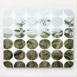 Summer Polka Dots Fields Skies Mouse Pads