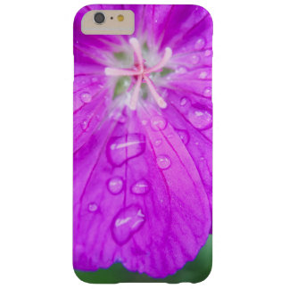 summer rain drops barely there iPhone 6 plus case