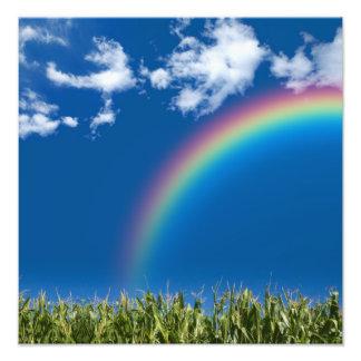 Summer Rainbow Wall Print Photo Art