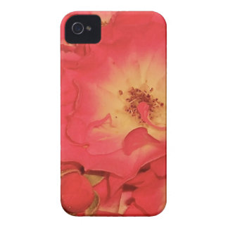 Summer Red Roses iPhone 4 Cover