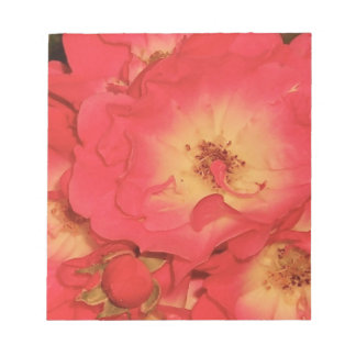 Summer Red Roses Notepad