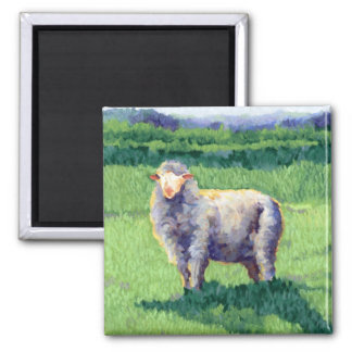 Summer Sheep Shadow Square Magnet