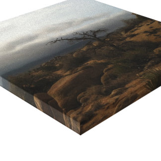 Summer Storm near Joshua Tree National Park Stretched Canvas Print