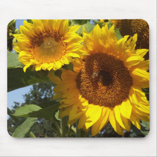 Summer Sunflowers on mousepad