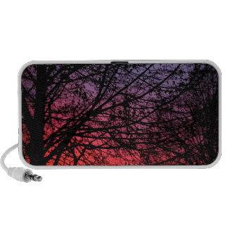Summer Sunset iPod Speaker