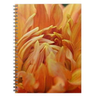 Summer Tales Notebook