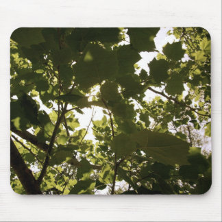 Summer Time Memories Mouse Pad