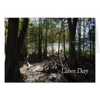 Summer Trees by the Lake Card