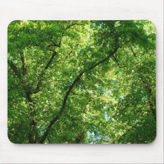 Summer Trees II Mouse Pad