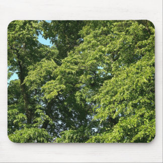 Summer Trees Mouse Pad