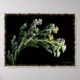 summer weeds poster