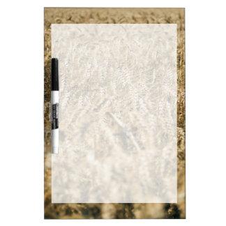 Summer Wheat Field Closeup Farm Photo Dry-Erase Whiteboard