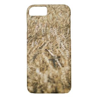 Summer Wheat Field Closeup Farm Photo iPhone 7 Case