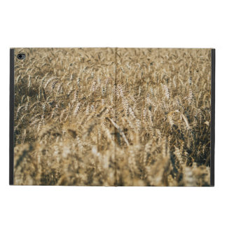 Summer Wheat Field Closeup Farm Photo Powis iPad Air 2 Case