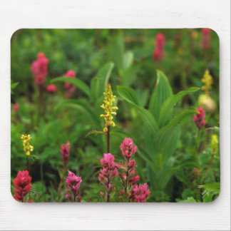 Summer Wildflowers Send Forth A Riot Of Color Mouse Pad