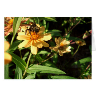 Summer's Day Bee on Sunny Yellow Flowers Greeting Card