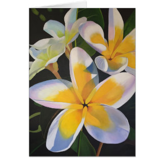 Summertime Frangipani Greeting Card - Blank