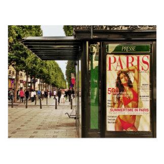 Summertime in Paris Postcard