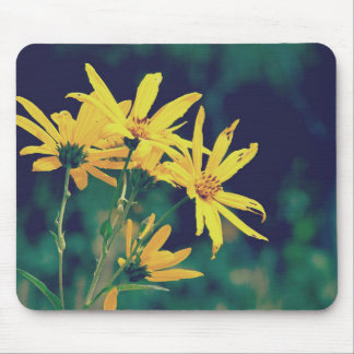 Summertime Wildflowers Mouse Pad