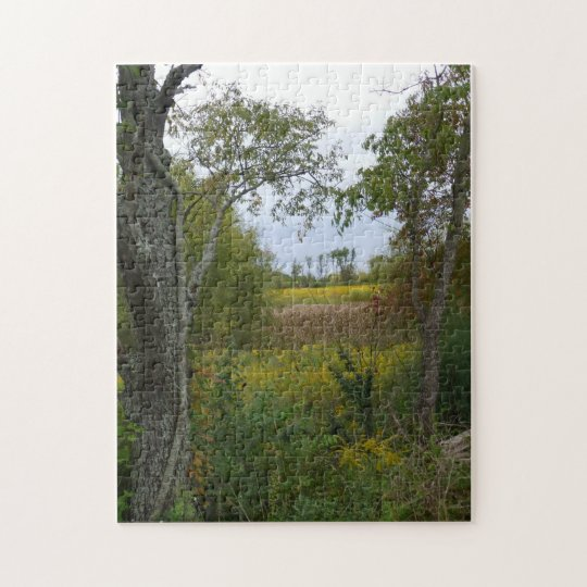 Summit Lake Prairie Trail Jigsaw Puzzle