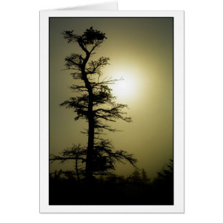 Summit Tree Card