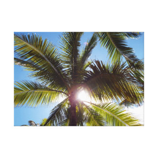 Sun across Palms Canvas Print