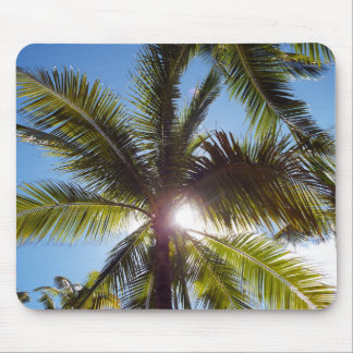 Sun across Palms Mouse Pad