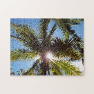 Sun across Palms Puzzles