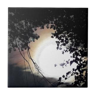 Sun And Pin Oaks Tile
