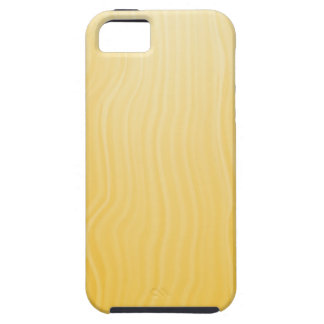 sun  background iPhone 5 cover