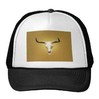 sun bleached steer skull hat