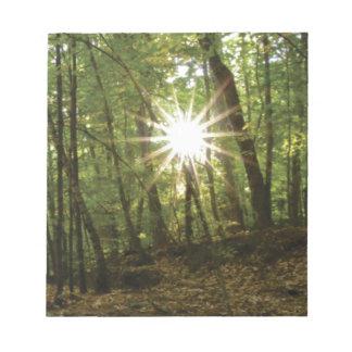 Sun breaks through woods notepad