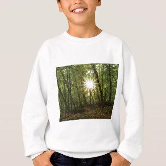 Sun breaks through woods sweatshirt
