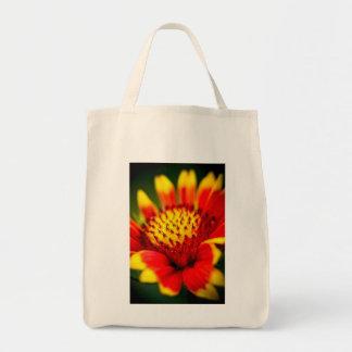 sun collector canvas bags