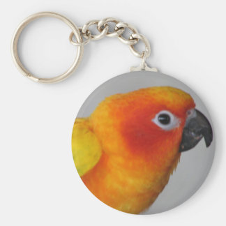 Sun Conure Key Ring