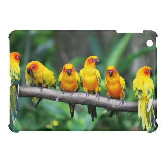 Sun Conures iPad Mini Case