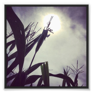Sun-Corn God Photo Print