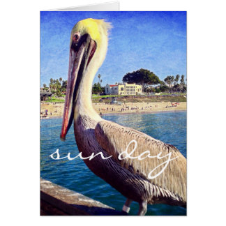 """Sun day"" quote beach pelican photo blank inside Card"