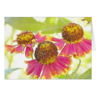 Sun Drenched Heleniums Card