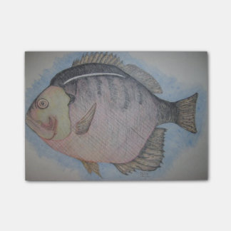 Sun Fish Post-it® Notes