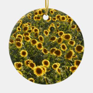 _sun flower field ceramic ornament