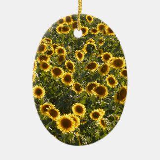 _sun flower field ceramic oval decoration