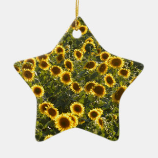 _sun flower field ceramic star decoration