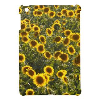 _sun flower field iPad mini covers