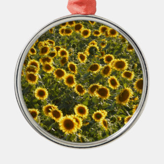 _sun flower field Silver-Colored round decoration