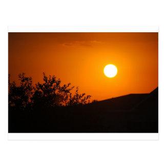 Sun Images Postcard
